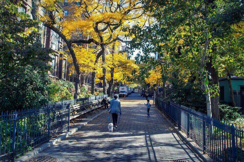 Where to Live in Brooklyn: 5 Neighborhoods to Call Home